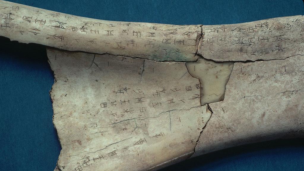 Гадальная кость эпохи Шан, сделанная из лопаточной кости вола. Фото с сайта thoughtco.com / Lowell Georgia